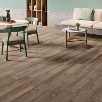 Love Tiles Wooden Brown 20 x 100 B609.0004.005
