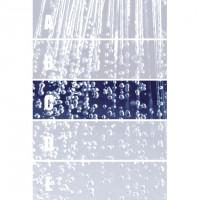 Privilege Dekor Rain C 29 x 100 Rektifiziert