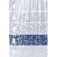 Privilege Dekor Rain D 29 x 100 Rektifiziert